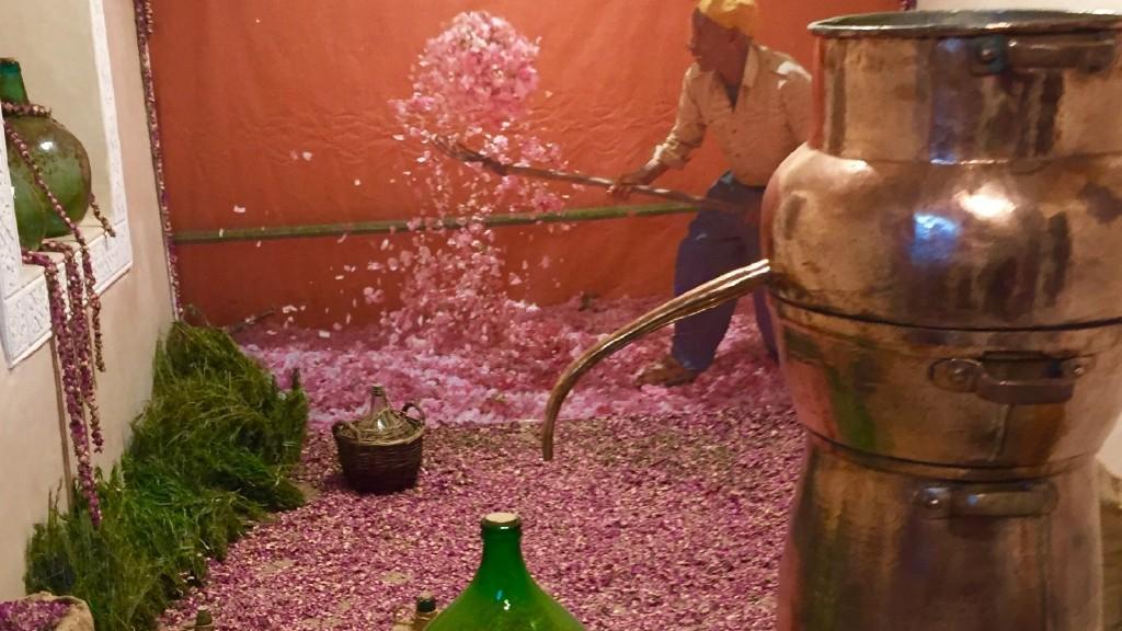 Parfum-Museum1.jpg