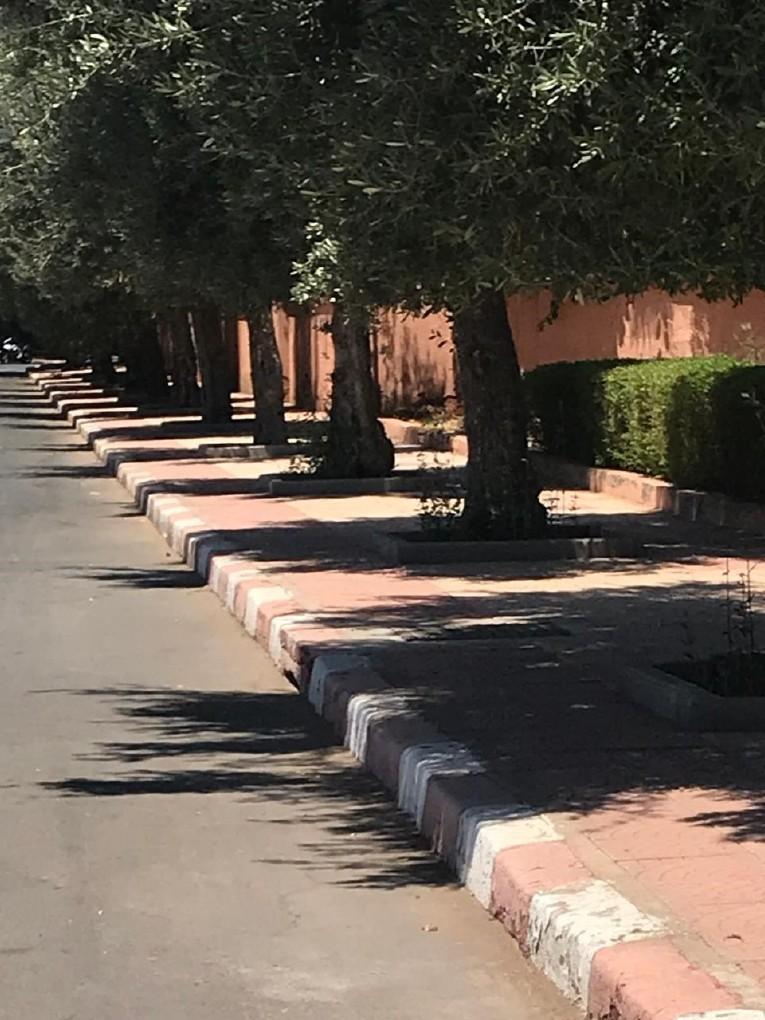 Schatten_von_Marrakesch.61.jpg