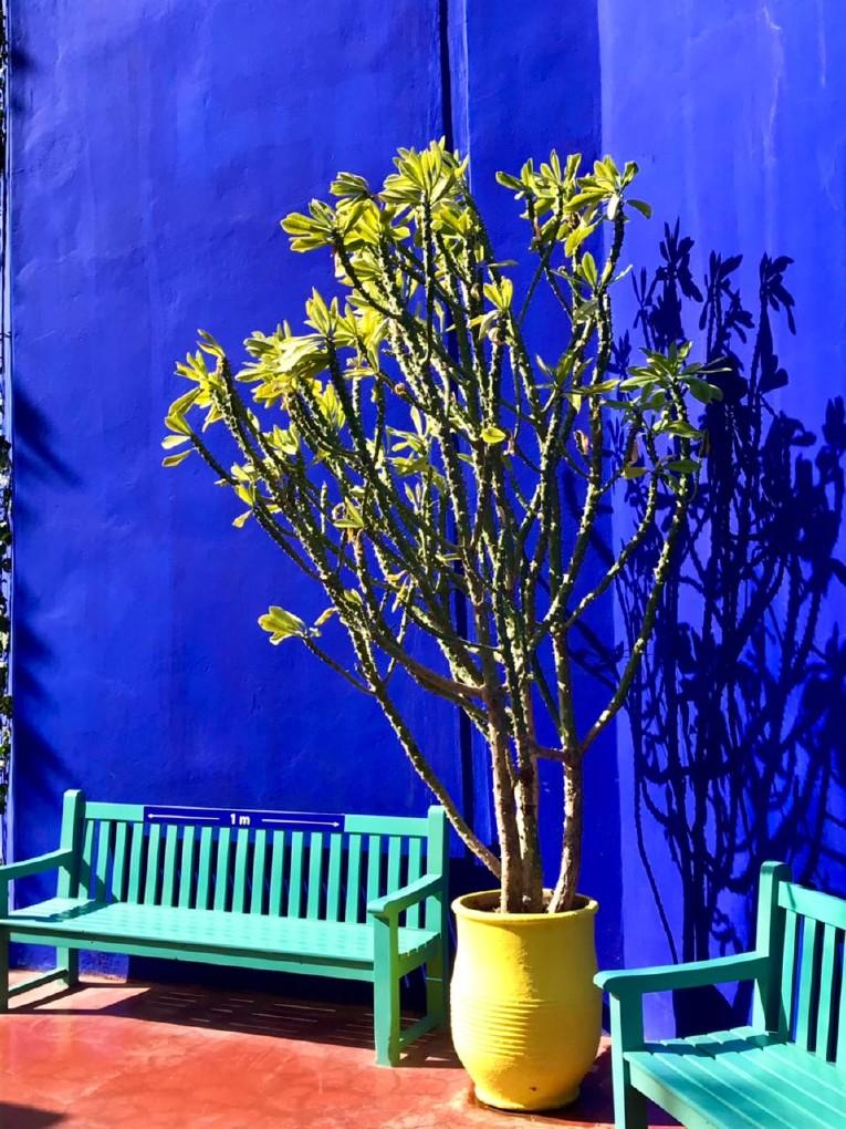 Schatten_von_Marrakesch.73.jpg